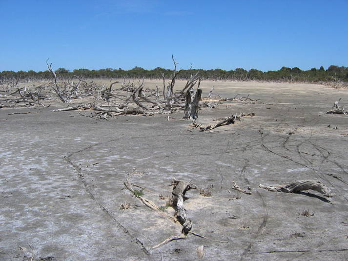 Wüstenbildung Wüstenbildung |  Bild: © User:Orderinchaos [CC BY-SA 3.0]  - Wikimedia Commons