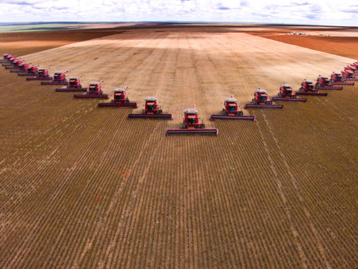 "Mass soybean harvesting at a farm in Brazil.  Bild: ""Soja Ernte"" © Alf Ribeiro | Dreamstime.com [Royalty Free]  - Dreamstime.com"