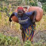 Kleinbäuerin in Äthiopien. Kleinbäuerin in Äthiopien. | Bild (Ausschnitt): © Rod Waddington [CC BY-SA 2.0] - Wikimedia Commons