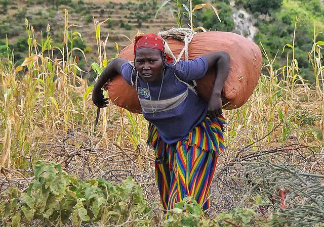 Kleinbäuerin in Äthiopien. Kleinbäuerin in Äthiopien.    Bild: © Rod Waddington [CC BY-SA 2.0]  - Wikimedia Commons