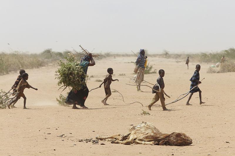 Eine Familie im Flüchtlingscamp Dadaab auf der Suche nach Feuerholz.