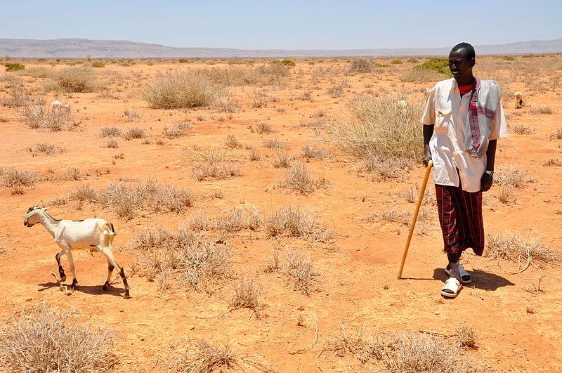 Dürre Bauer Afrika