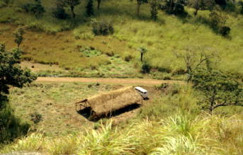 Farm Sierra Leone