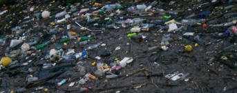 Plastik Müll  | Bild: © Edinburgh Greens [CC BY 2.0]  - flickr
