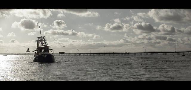 Hochseetrawler  Bild: ©  Geraint Rowland [CC BY-NC 2.0]  - flickr