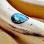 Fairtrade-Siegel | Bild (Ausschnitt): © Dave Crosby [CC BY 2.0] - Flickr