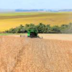 Sojafeld in Brasilien Im Nordosten Brasiliens müssen einheimische Erzeugnisse dem Sojaanbau für ausländische Großkonzerne weichen. | Bild (Ausschnitt): © Governo do Estado do Rio Grande do Sul [CC BY-NC 2.0] - flickr