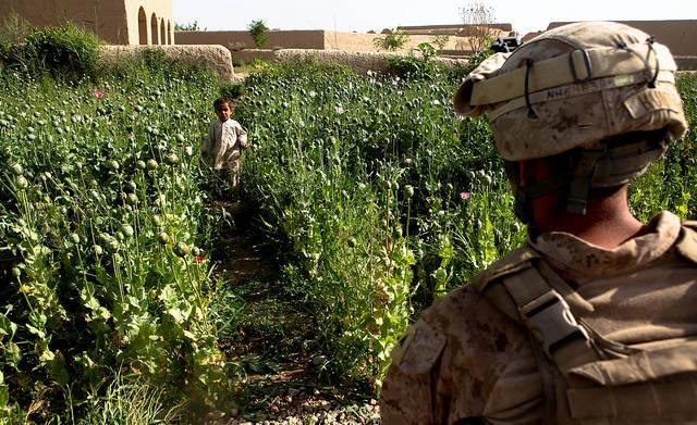 USA in Afghanistan Die USA greifen verstärkt militärisch in Afghanistan ein. Dadurch sterben Zivilisten, die insbesondere in Drogenlaboren arbeiten. | Bild: © ResoluteSupportMedia [CC BY 2.0]  - Flickr