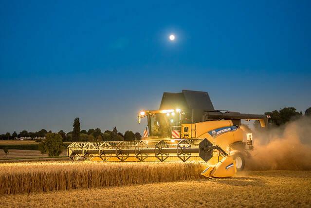 Die weltweite Getreideernte konnte in den Jahren 2018/19 den Bedarf nicht decken    Bild: © Christian Kothe [CC BY-ND 2.0]  - flickr