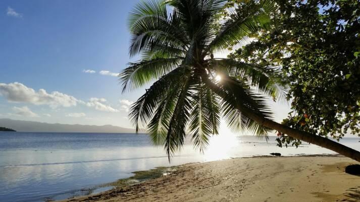 Der Klimawandel macht selbst vor der schönsten Natur keinen Halt |  Bild: © n.v. -
