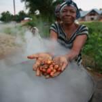 Palmöplantagen im Kongo Die Arbeiter der Palmölplantagen im Kongo müssen teilweise unter menschenunwürdigen Bedingungen arbeiten | Bild (Ausschnitt): © MONUSCO Photos [CC BY-SA 2.0] - flickr