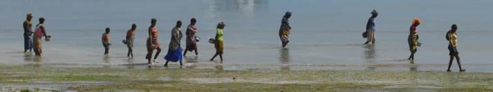 Die Bewohner Cabo Delgados leiden unter den terroristischen Attacken und verlieren oftmals alles, was sie besitzen an die Terroristen |  Bild: © F Mira [CC BY-SA 2.0]  - flickr