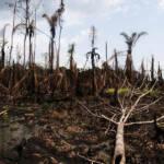 Ölkatastrophe im Nigerdelta Shell muss sich für Umweltverschmutzung und Menschenrechtsverletzungen im Nigerdelta verantworten. | Bild (Ausschnitt): © Sosialistisk Ungdom (SU) [CC BY-ND 2.0] - flickr