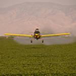 Sprühen von Pestiziden per Flugzeug | Bild (Ausschnitt): © Greg Jordan [CC BY-NC-ND 2.0] - flickr