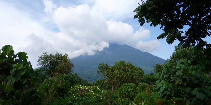 Der Virunga-Nationalpark im Kongo.