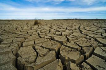 Dürres Land