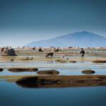 Der Uru-Uru-See Bilder wie diese sind am Uru-Uru-See aufgrund von riesigen Plastikmengen mittlerweile eine Seltenheit | Bild (Ausschnitt): © Viaje a Bolivia [CC BY 2.0] - Flickr